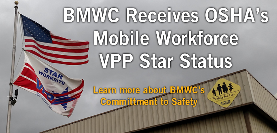 VPP Mobile Star Status
